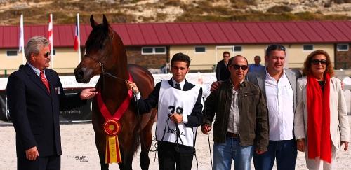 Abha Qatarah Nacional 2009